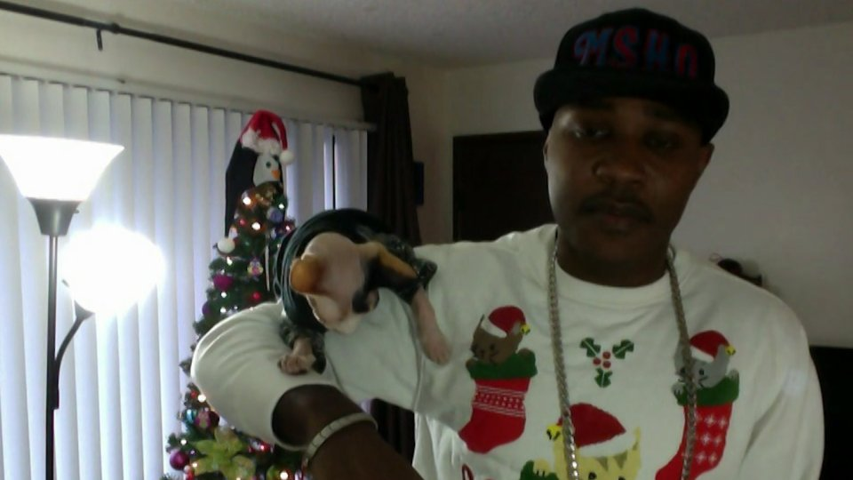 This Guy Who Raps About His Cats Is Totally Purrrfect