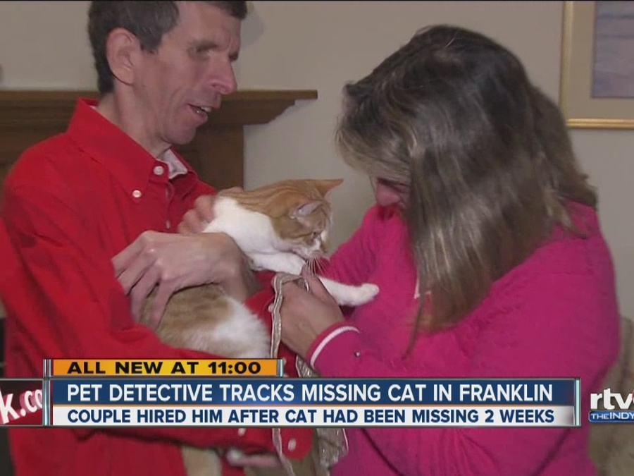 Couple Turns To Real-Life Pet Detective To Find Missing Cat