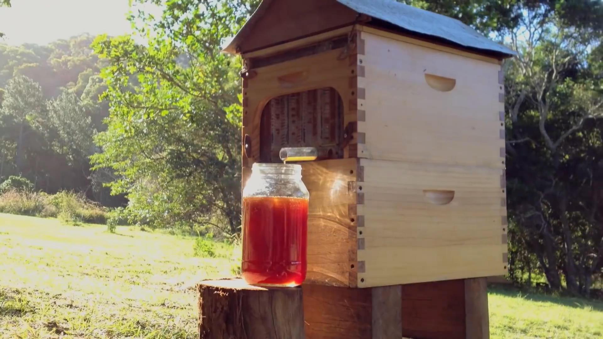 Honey Recipes That'll Remind You How Important Our Bees Are | HuffPost Life