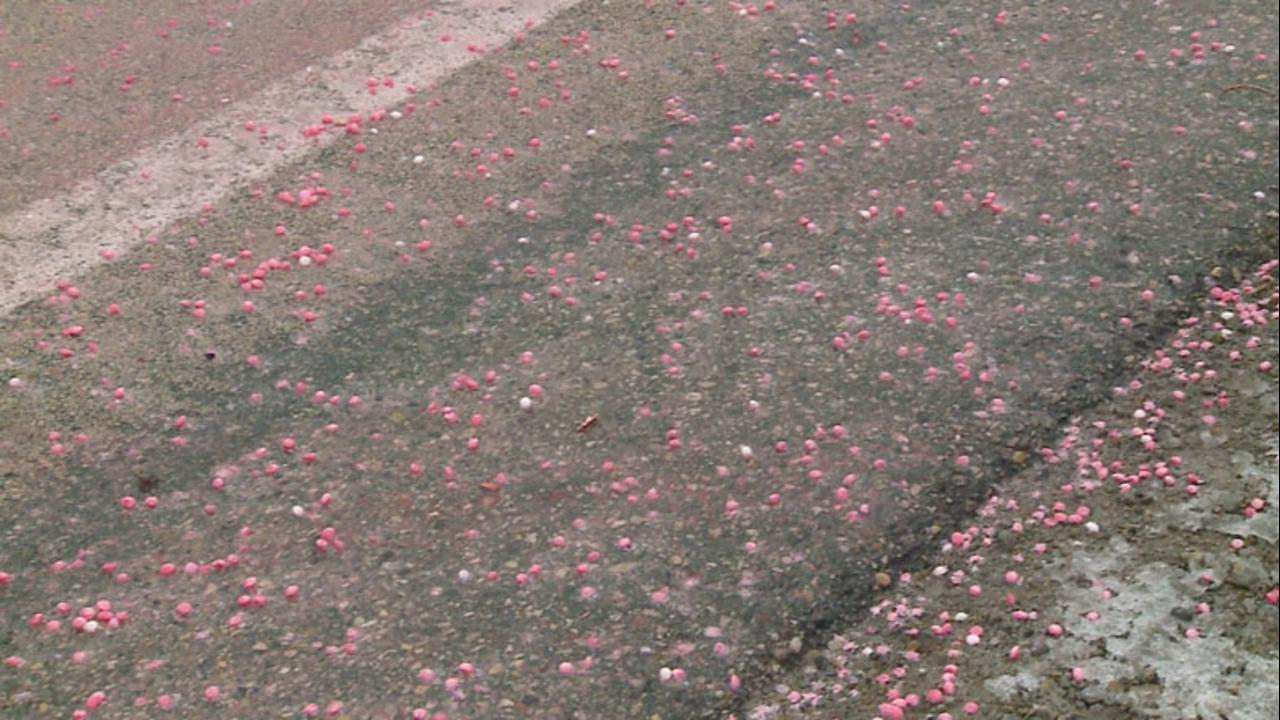 Skittles Highway Spill Reveals Awful Trend In The Food Industry