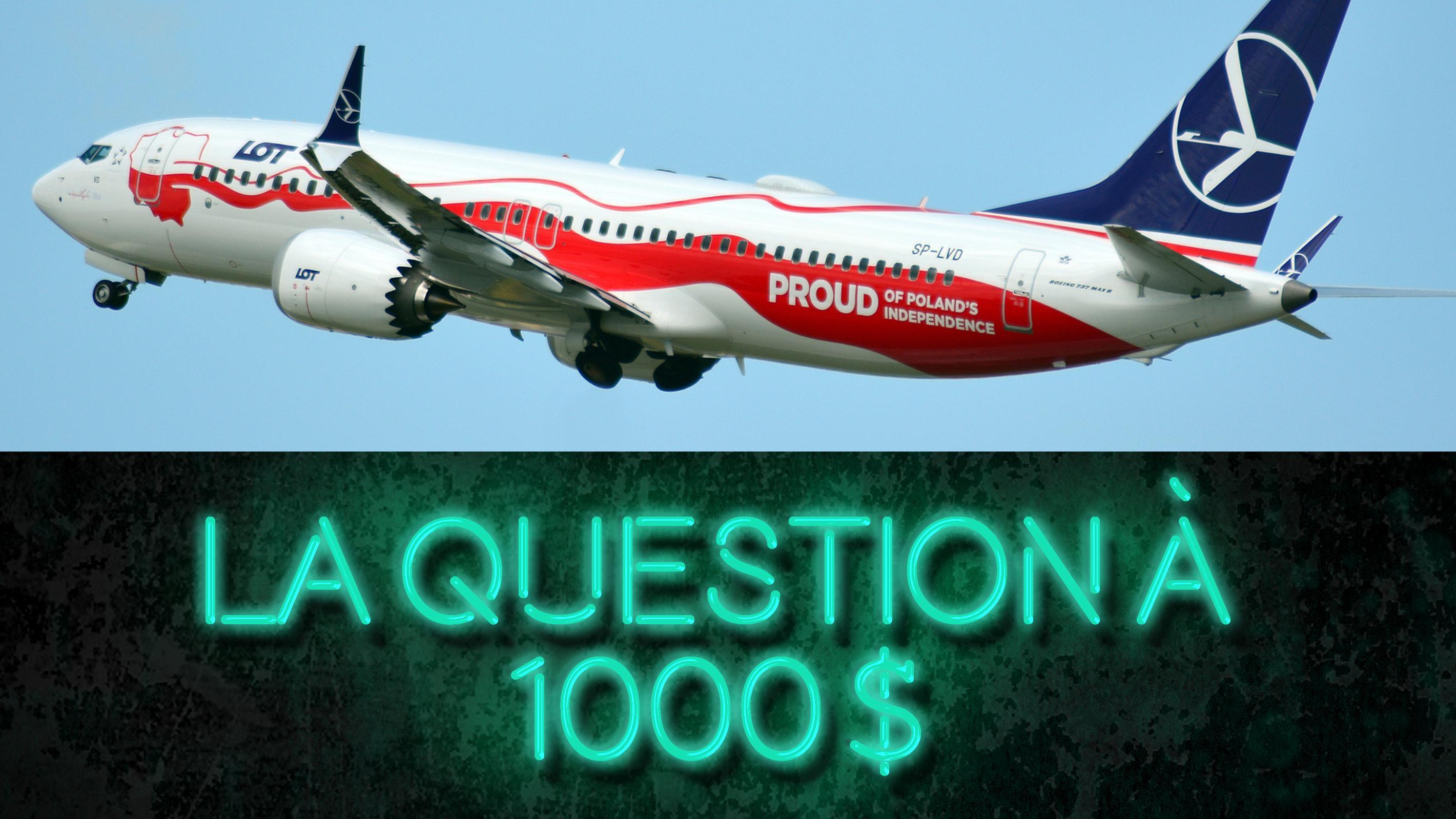 Boeing 737: que faire avec les appareils cloués au sol?