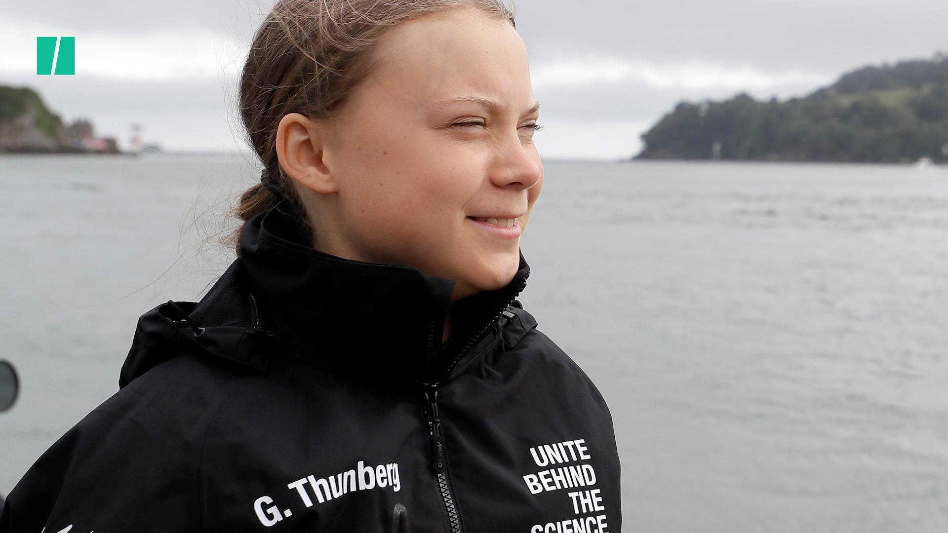 Arron Banks Is Being Mauled For His 'Vile' Tweet About Teenager Greta Thunberg